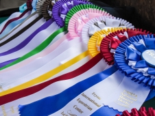 Add to your ribbon collection at TIEC this fall