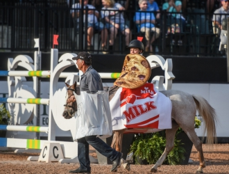 2019 Pony Costume Parade at TIEC